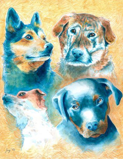 dogs-illustration